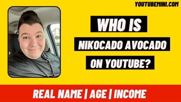 Nikocado Avocado   Real Name   Age   Net Worth